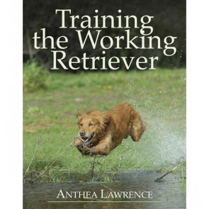 Training the Working Retriever