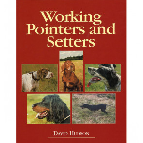 Working Pointers and Setters