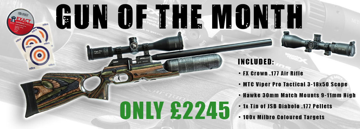 Gun of The Month