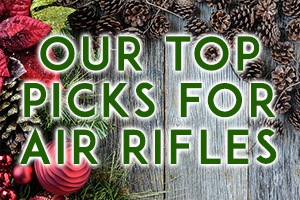 Our Top Picks for Air Rifles